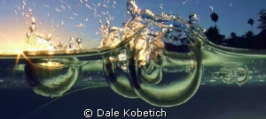 Sunset drops in a tide pool ...laguna beach by Dale Kobetich 